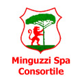 Minguzzi S.p.A. consortile